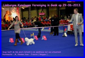 Limburgse Kynologen Vereniging