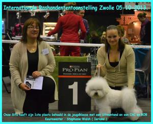 Sifu Zwolle 4