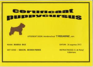puppy Diploma Shauni