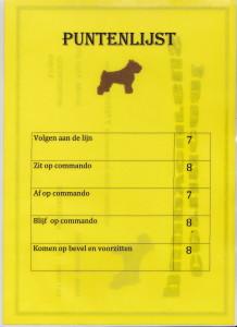 puppy Diploma Sifu 2