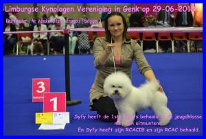 Limburgse Kynologen Vereniging in Syfy