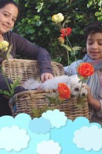 kind en hond 28