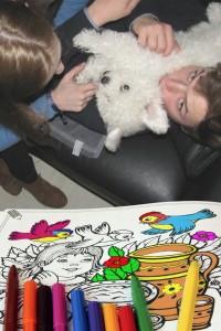 kind en hond18