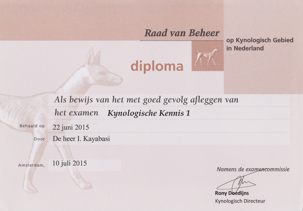 ismayil diploma kk1